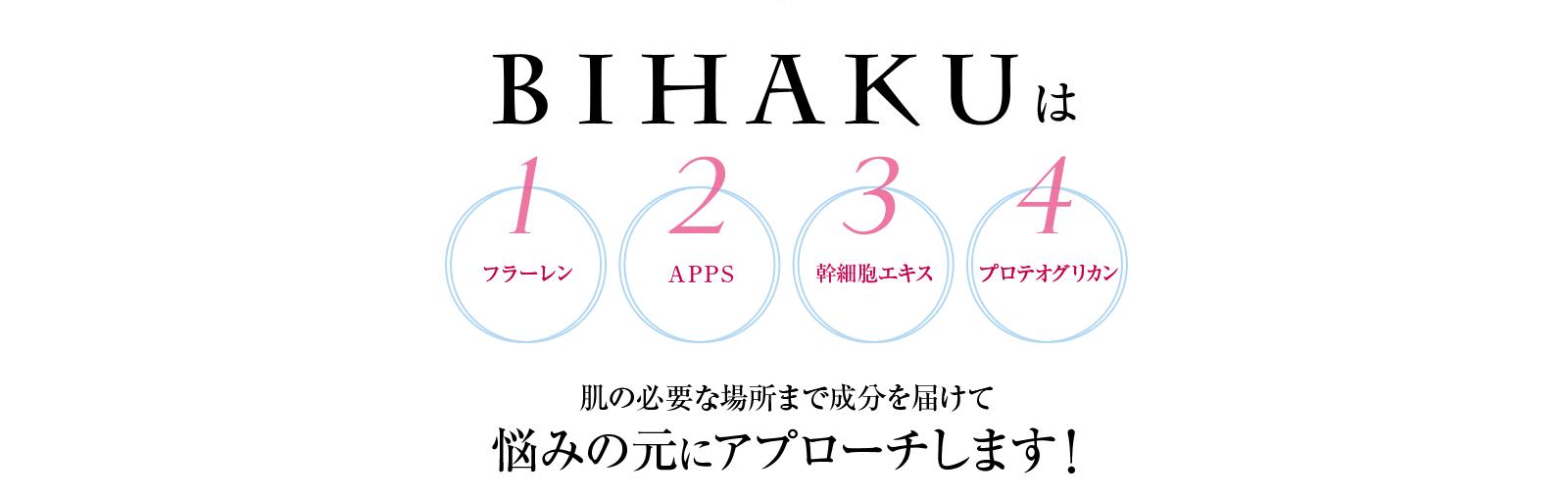 bihaku商材画像
