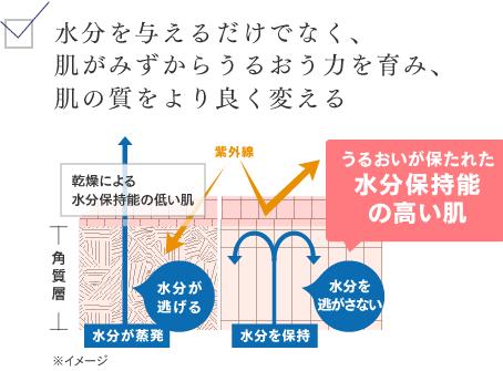 ライスパワー11の説明図